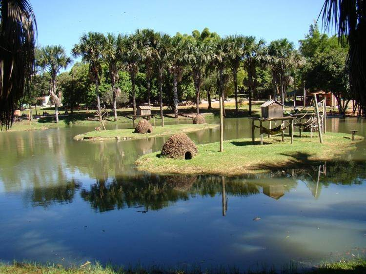 Zoológico de Goiânia estará aberto das 8h às 17h | Foto: Divulgação