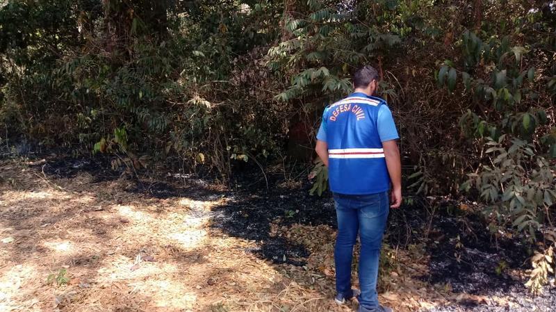 Incêndio no Horto Florestal de Aparecida   Foto: Defesa Civil / Reprodução